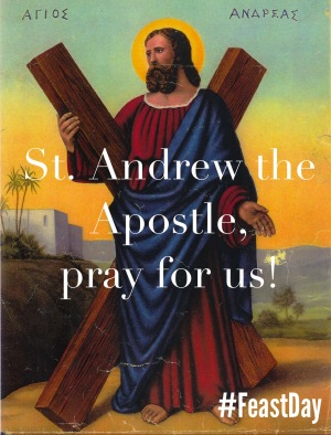 St. Andrew the Apostle, pray for us